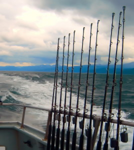Halibut Fishing in Cook Inlet